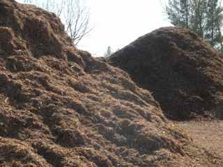 Coloredmulchpile