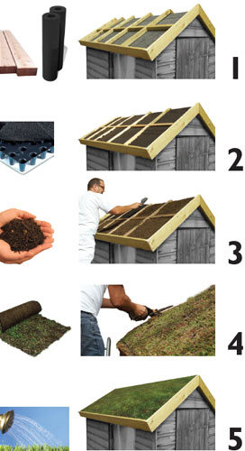 Green Roofs And The Making Of